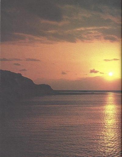 1977-pg113