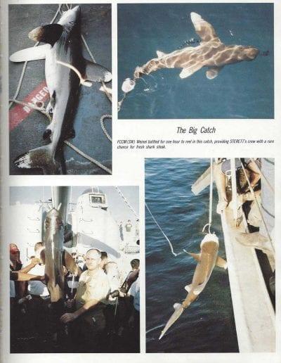 1987-pg153